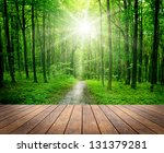 wood textured backgrounds in a... | Shutterstock . vector #131379281