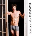 sexy bachelor lover concept....   Shutterstock . vector #1313804354