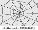 cobweb isolated on white ... | Shutterstock .eps vector #1313907881