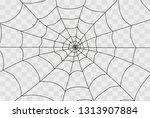 cobweb isolated on white ... | Shutterstock .eps vector #1313907884