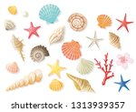 seashell summer illustration set | Shutterstock .eps vector #1313939357