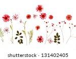 summer flowers   Shutterstock . vector #131402405