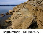 forest lake shore in tennessee  ...   Shutterstock . vector #1314084077