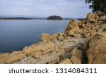 forest lake shore in tennessee  ...   Shutterstock . vector #1314084311
