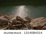 forest lake shore in tennessee  ...   Shutterstock . vector #1314084314