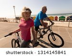 side view of active senior... | Shutterstock . vector #1314145841