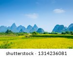 rice fields and mountains ... | Shutterstock . vector #1314236081