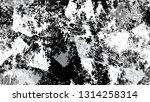 grunge watercolor dry brush... | Shutterstock .eps vector #1314258314