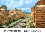 Ruins Of Pompeii With Mount...