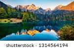 tranquil morning scene of... | Shutterstock . vector #1314564194