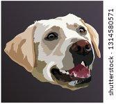 golden labrador retriever... | Shutterstock .eps vector #1314580571