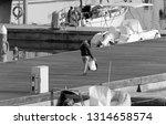 italy  sicily  mediterranean... | Shutterstock . vector #1314658574