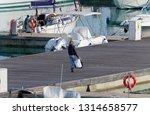 italy  sicily  mediterranean... | Shutterstock . vector #1314658577