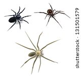 spiders. its a raster version.... | Shutterstock . vector #131501579