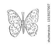butterfly sketch  black contour ... | Shutterstock .eps vector #1315027007