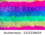 texture of shaggy fur. | Shutterstock . vector #1315238654