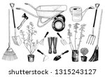 vector set of various garden... | Shutterstock .eps vector #1315243127