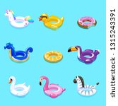 swimming toys. swim summer... | Shutterstock .eps vector #1315243391