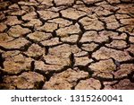 brown dried soil surface with... | Shutterstock . vector #1315260041