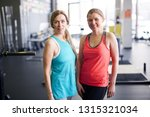 two active mature females in... | Shutterstock . vector #1315321034