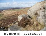 gritstone outcrops of rock in... | Shutterstock . vector #1315332794