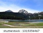 black lake  crno jezero  and... | Shutterstock . vector #1315356467