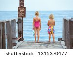 happy little children with... | Shutterstock . vector #1315370477