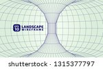 abstract wireframe background.... | Shutterstock .eps vector #1315377797