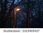 a single streetlamp at night ... | Shutterstock . vector #1315405427