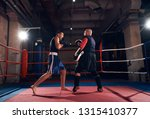 young fighter practicing... | Shutterstock . vector #1315410377