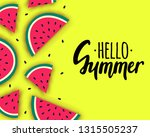 vector hello summer background...   Shutterstock .eps vector #1315505237