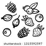set of hand drawn berries ...   Shutterstock .eps vector #1315592597