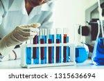 woman scientist working in... | Shutterstock . vector #1315636694