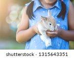 cute asian child girl playing... | Shutterstock . vector #1315643351