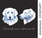 slovakian chuvach. slovak cuvac ... | Shutterstock . vector #1315651697