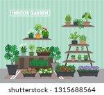 house indoor vector plants and...   Shutterstock .eps vector #1315688564