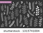 hand drawn leaves and branches... | Shutterstock .eps vector #1315741004