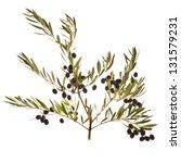 black olives in olive tree... | Shutterstock . vector #131579231
