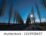 shadows of trees in dachau... | Shutterstock . vector #1315928657