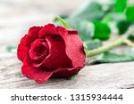 romantic background with one... | Shutterstock . vector #1315934444
