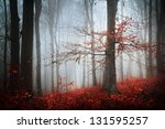 beautiful autumn foggy day into ... | Shutterstock . vector #131595257