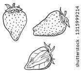 vector set of sketch... | Shutterstock .eps vector #1315999214