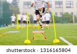 soccer player on fitness... | Shutterstock . vector #1316165804