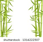 vector green bamboo stems and...   Shutterstock .eps vector #1316222507