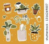 hello spring poster in vector.... | Shutterstock .eps vector #1316269007