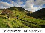 afternoon light above hartsop... | Shutterstock . vector #1316304974