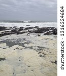 cape town waters | Shutterstock . vector #1316324684