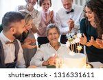 an elderly woman with... | Shutterstock . vector #1316331611