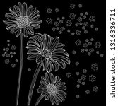 chamomile flowers hand drawn...   Shutterstock .eps vector #1316336711