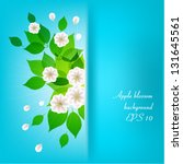 bouquet of white flowers on a... | Shutterstock .eps vector #131645561